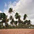 Praia na Costa do Sauipe, Bahia