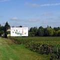 Nuits-St-Georges, na Borgonha, onde se produz um vinho maravilhoso