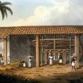 Engenho de cana-de-açucar na Bahia colonial
