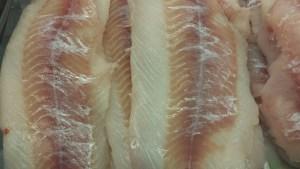 Fresh Ling Cod