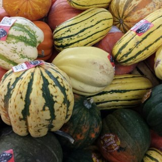 Fresh Winter Squash, just $0.59/Lb!