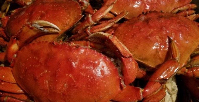 Fresh Crab Special & More In Now!