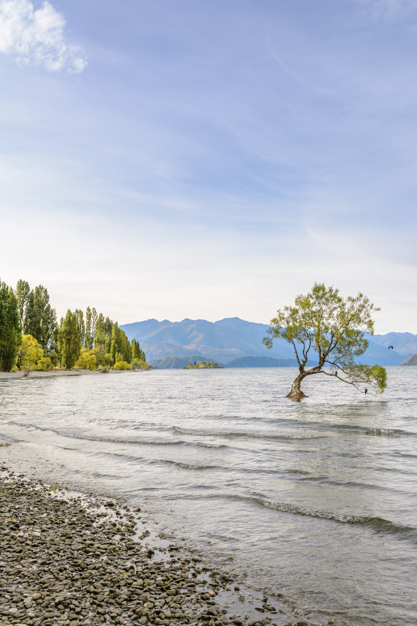 A perfect summer day in Wanaka