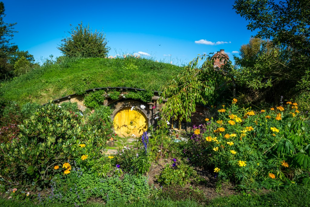 A Day In Hobbiton