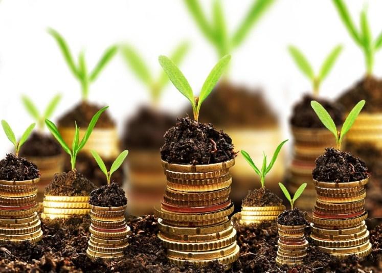 hacer crecer el dinero