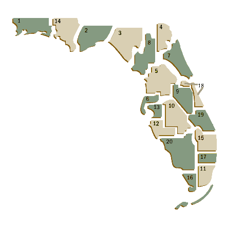 florida-debt-attorney-practice-area