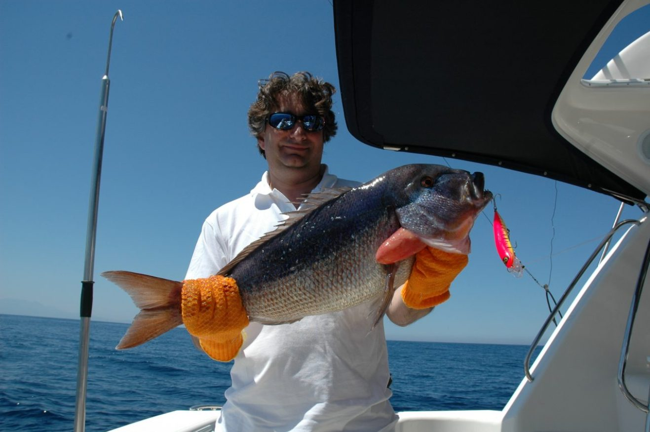 Una bella preda catturata a traina con il monel nelle acque della Corsica