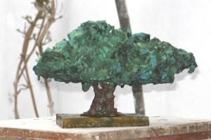 Premio Empresa CAAE Encina centenaria