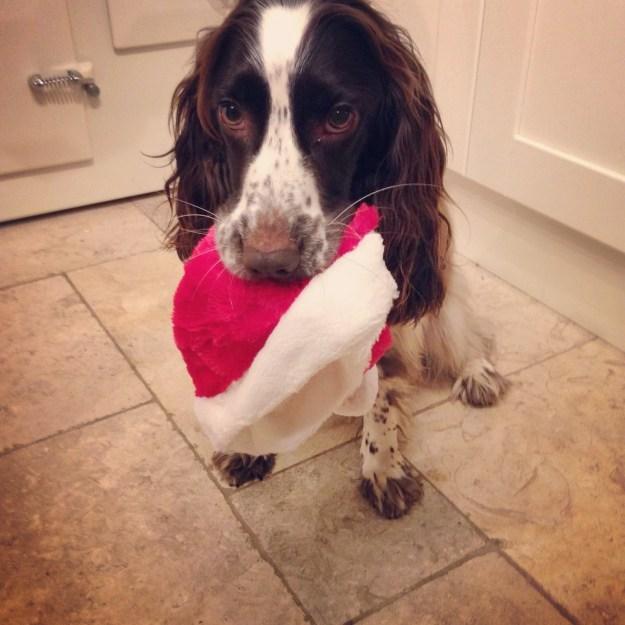 Christmas Monty