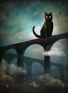 Christian schloe lua escura Into the Night