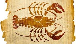 Escorpião11