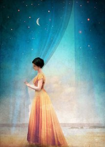 balsamic night with a view christian schloe