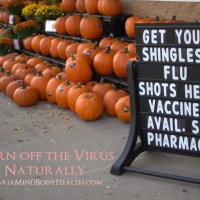 Turn off the Shingles Virus