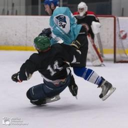 ZSE Hokej