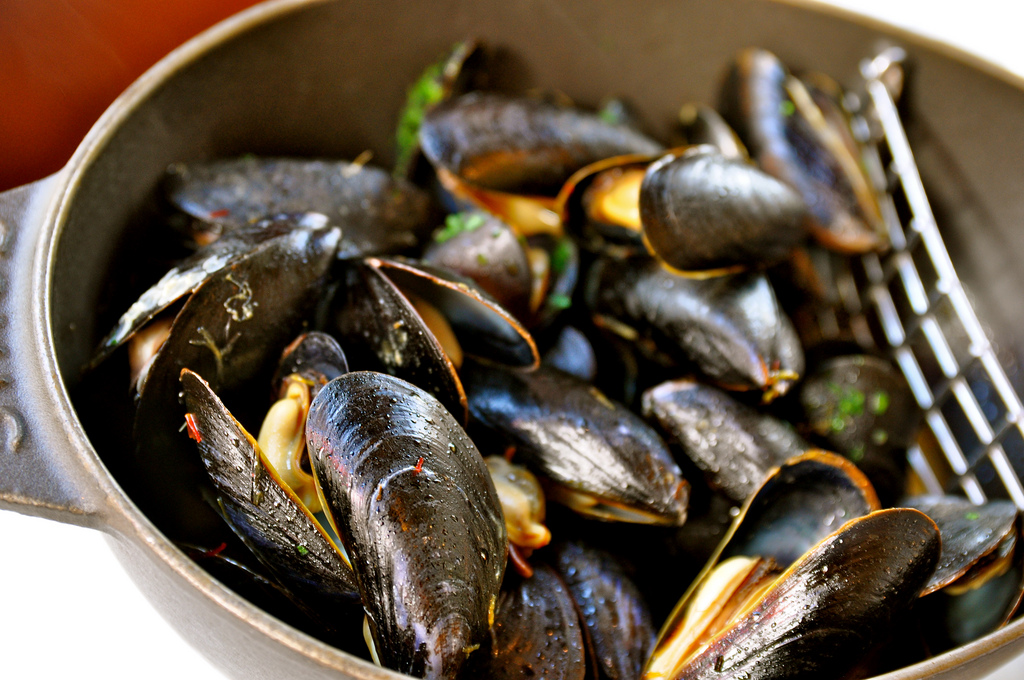 Steamed Mussels with Fennel, White Wine and Tarragon ...