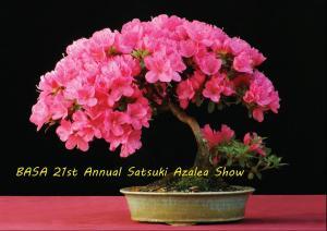 BASA 21st Show