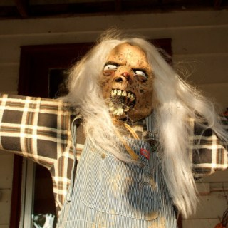 A scary-looking scarecrow