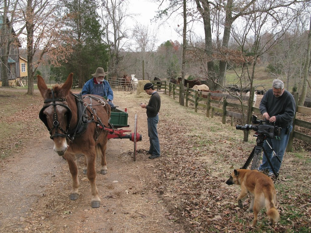 Impressive Thanks To Cooperation Camelback Bridge Film We Have Been Working On This Jan Turned Out Tobe Quite Mark Wagoner Productions Got To Go See A Man About A Ruby Mule We Shot New Scenes bark post See A Man About A Dog