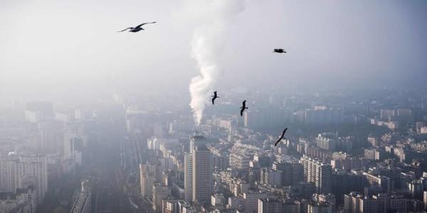 Les émissions de CO2 en hausse après 3 ans de stabilité