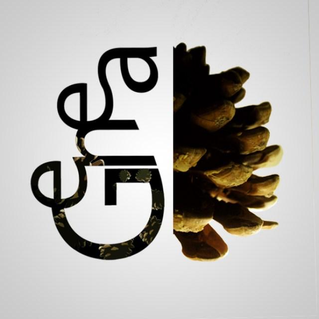 logo - pomme de gene copie