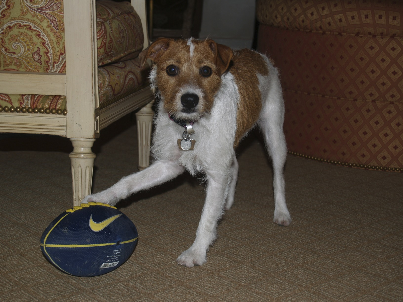 Maggie with football