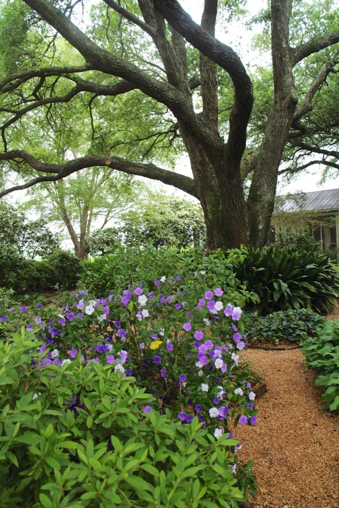 A Garden Club Field Trip