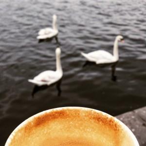 Snídaně na Náplavce