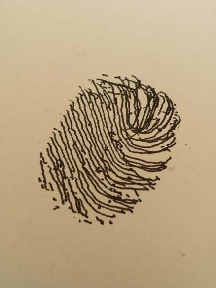 First test to draw a fingerprint