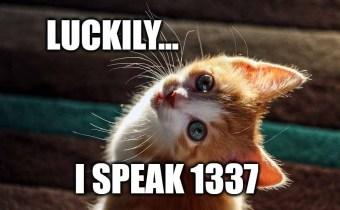 Luckily I speak 1337