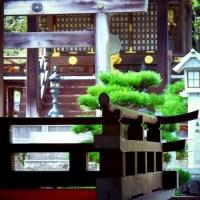 394 苗村神社 拝殿より