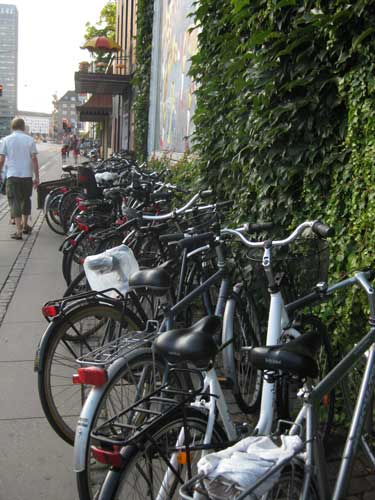 copenhagenbicycles.jpg