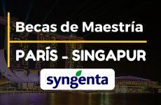 Becas para Maestría en Administración de Empresas (MBA) en Paris y Singapur
