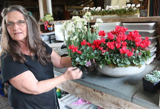 Sharon shows me some of the tricks she uses to create stunning arrangements