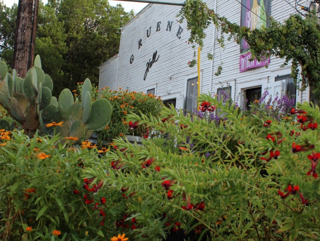 The container gardens in front of Gruene Hall are stunning