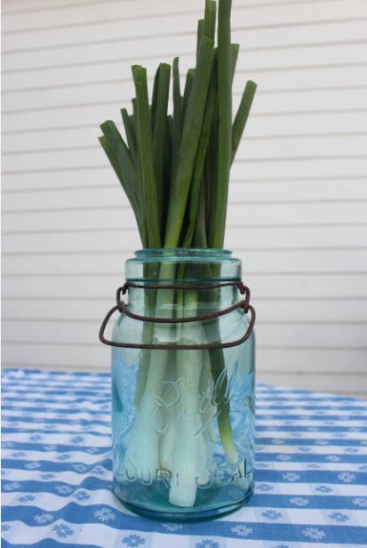 gumbo-onion-1