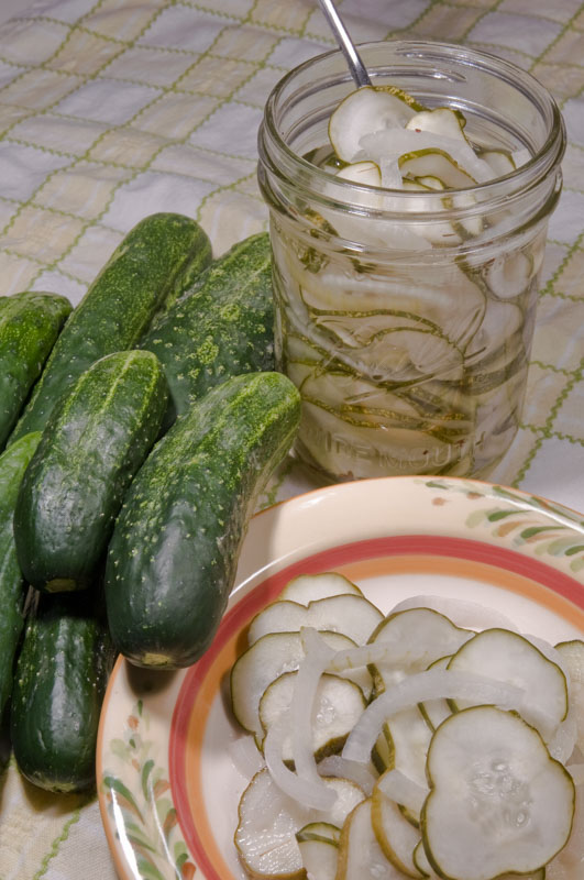 I love making (and eating) homemade pickles.  There are tons of great recipes out there on the internet.