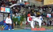 2011-03-02_III-Open-de-Venezuela_Taekwondo_combates_02