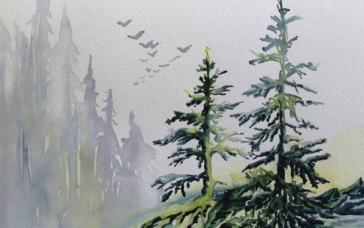 evergreens-in-the-mist-joanne-smoley