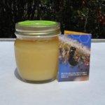 【人生の楽園】大分県豊後大野市鳥屋地区の観光や希少ハチミツの購入方法などご紹介