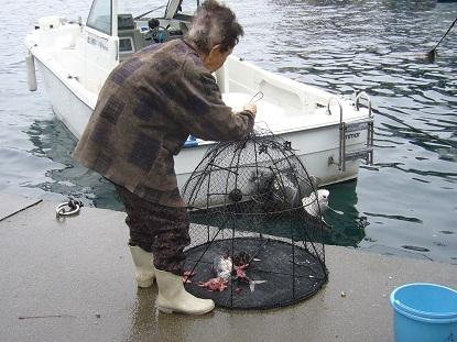 もんどり漁