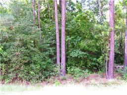 Property for sale at LT 43A Brown Bark, Magnolia,  Texas 77354