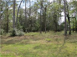 Property for sale at 28332 Meadow Forest, Magnolia,  Texas 77355
