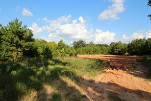 Property for sale at 19 Acres Woodway, Magnolia,  Texas 77354