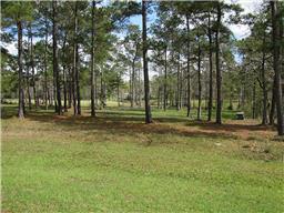 Property for sale at 28442 Emerald Oaks, Magnolia,  Texas 77355
