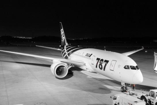 ANAの飛行機(787)