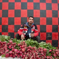 Radish seller against red and black