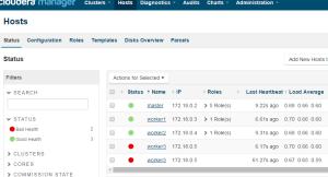 Duplicate Host entrries