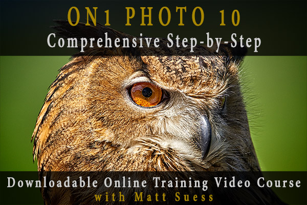 ON1 Photo 10 Comprehensive Step-by-Step Downloadable Online Training Video