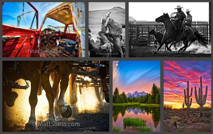 Photo Gallery and Print Store