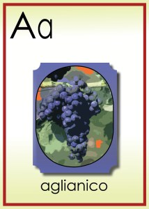 A is for Senore Aglianico
